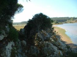 Lagoa de Óbidos