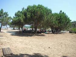 Dia dos Avós - Lagoa de Óbidos